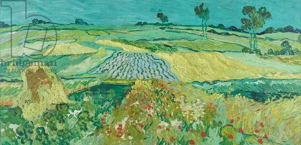 The plain near Auvers, 1890 (oil on canvas)