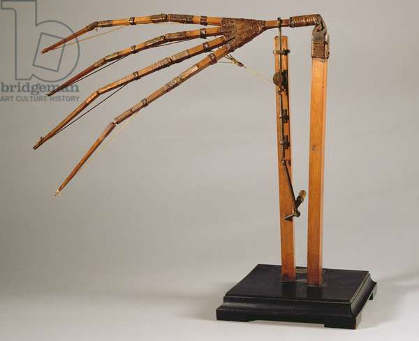 Model reconstruction of da Vinci's design for an articulated wing (wood & metal)