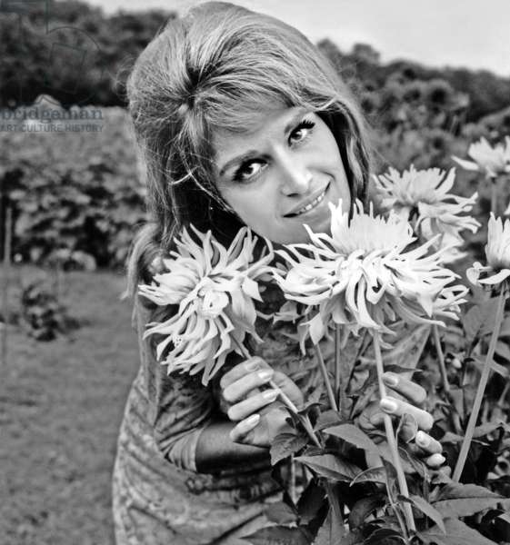 Dalida at Exhibition of Dalhias in Sceaux (France) September 15, 1964 (b/w photo)