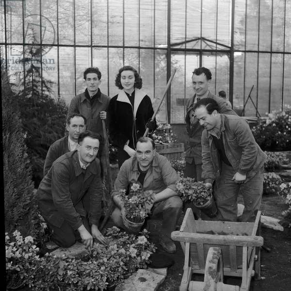 Floral Exhibition in Auteuil, 1952