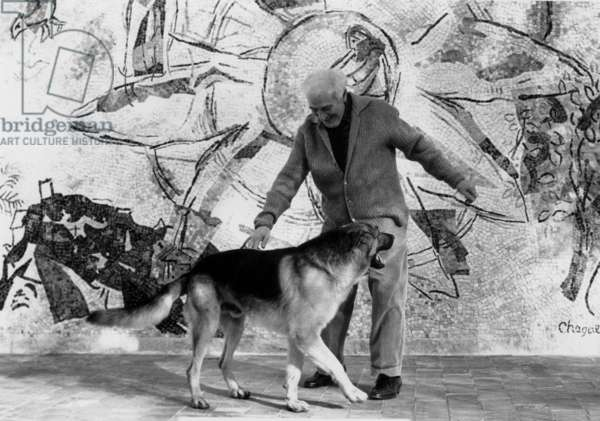 Marc Chagall in his home in Saint Paul de Vence playing with his dog Pacha in front of his ceramic, 2 January 1968 (b/w photo)
