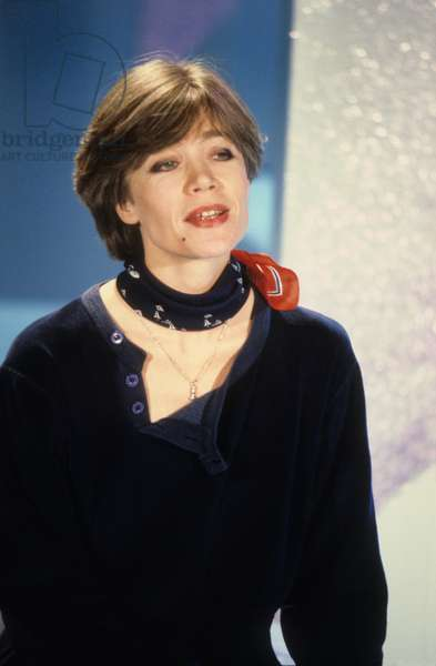 Francaise Singer Francoise Hardy In The 90s (photo)