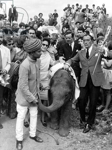 Salvador Dali on September 22, 1967 With A Little Elephant (b/w photo)