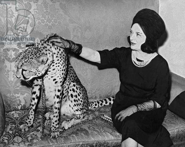 Pola Negri with her leopard, 27th October 1963 (b/w photo)