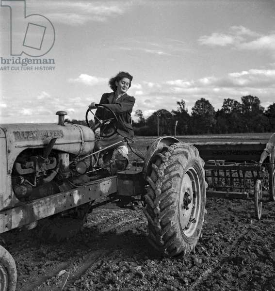 Young woman driving a tractor, France, October 1949 (b/w photo)