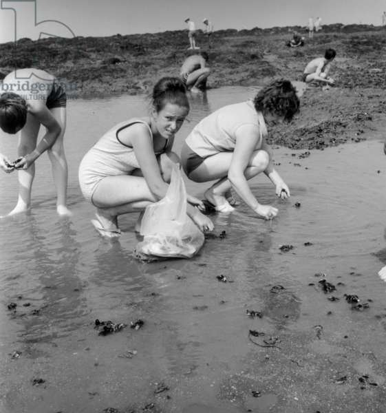Holidays in Port-Giraud, France, August 6, 1970 : Mussel Gathering (b/w photo)