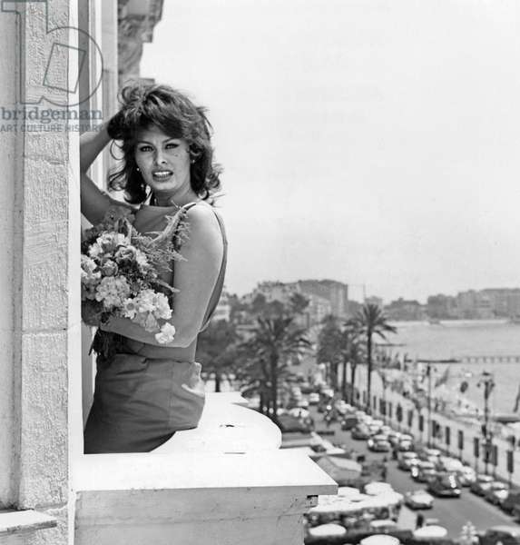 Sophia Loren during Cannes Festival on May 13, 1959 at The Balcony of Carlton Hotel (b/w photo)
