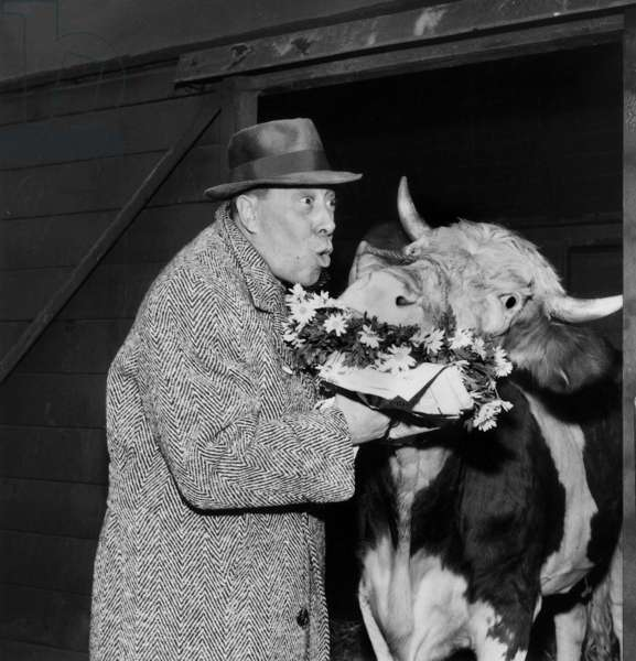 "French Actor Fernandel With Cow Daisy Promoting Film ""The Cow and the Prisoner"" December 7, 1959 (b/w photo)"