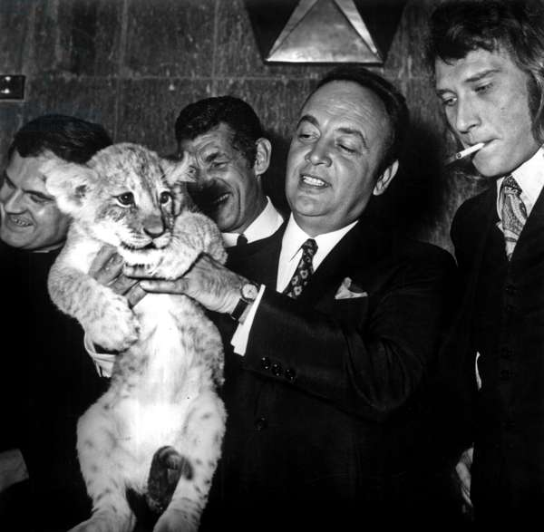 """Raymond Pellegrin with a lion, Michel Constantin and Johnny Hallyday at the presentation of the film """"La part du lion"""", 9 September 1971 (photo)"""