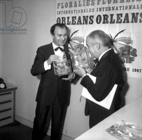 Fernand Reynaud and Louis De Funes, Night of the French Cinema Award, 25 November 1966 (photo)