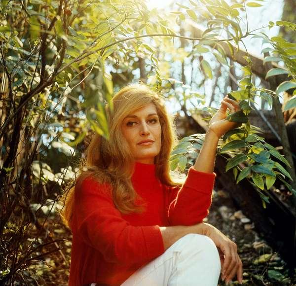 Dalida (1933-1987), c. 1970 (photo)