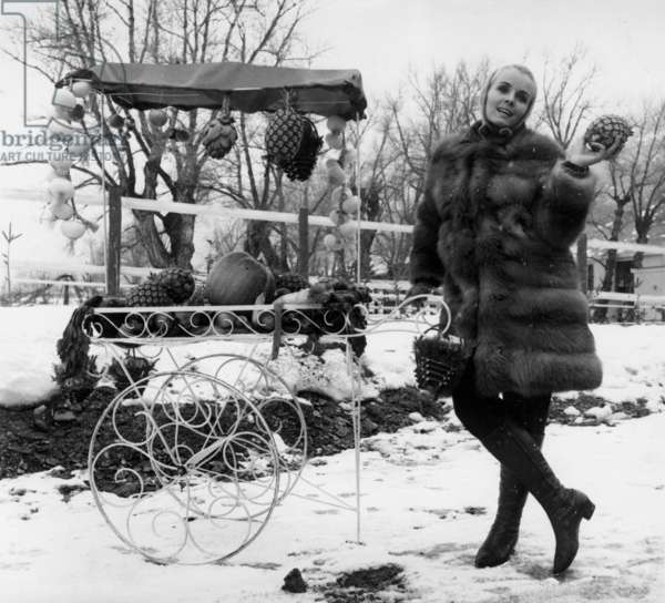 Actress Marie France Boyer at Serrs Chevalier in the Alps, 23 January 1967 (photo)