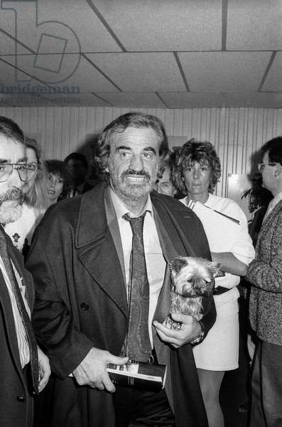 """French Actor Jean Paul Belmondo (with his yorkshire) arriving at the factory """"Fil a film"""", 3 November 1989 (photo)"""