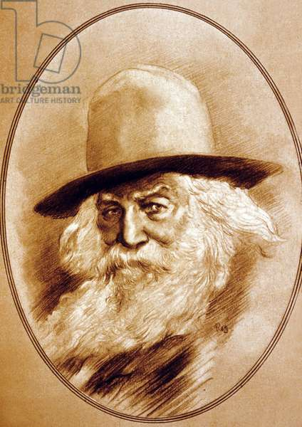 Walt Whitman (1819-1892) poete americain
