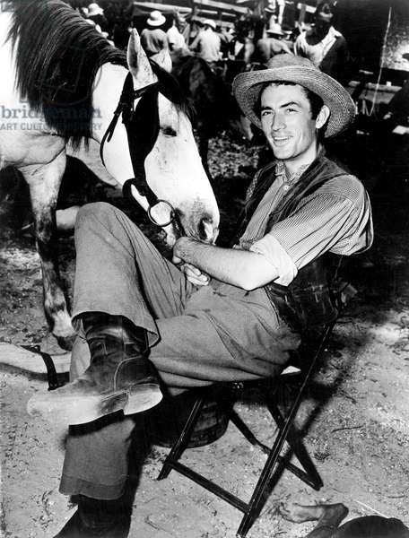 Gregory Peck et le cheval César sur le tournage du film dans les années 50