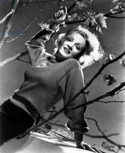 Marlene Dietrich c. 1940