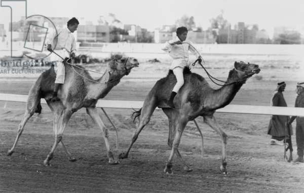 Camel race in Saudi Arabia in honour of Queen Elizabeth II's visit to to the Middle East, 1979 (b/w photo)