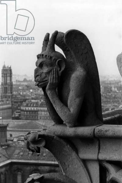 gargoyle of cathedral Notre Dame of Paris, 1939
