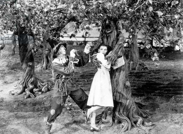 Le Magicien d'Oz The Wizard Of Oz de VictorFleming et RichardThorpe avec Ray Bolger et Judy Garland 1939