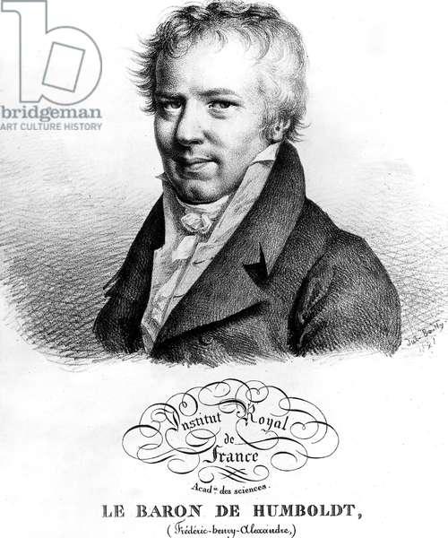 Alexander Von Humboldt (1769-1859) German naturalist and explorer, engraving