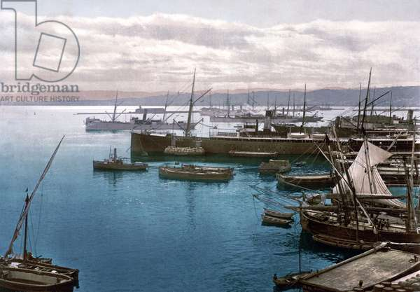 The harbour at Algiers by moonlight, c.1899 (photochrome)