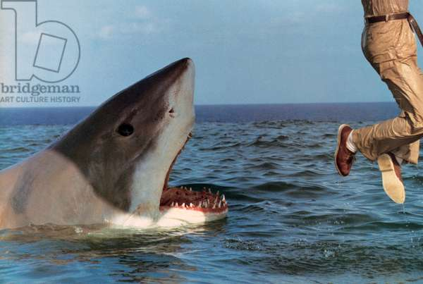 La mort au large L'ultimo squalo Great White de Enzo G. Castellari 1981