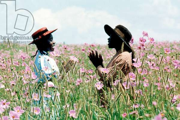 La couleur pourpre The colour purple de StevenSpielberg 1985