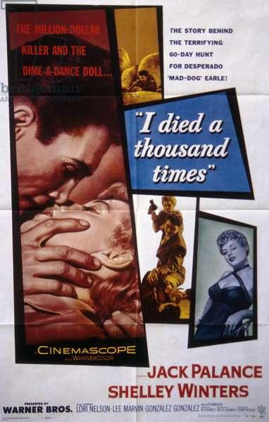 Affiche du film I Mort a Thousand Times de Stuart Heisler avec Jack Palance et Shelley Winters, 1955.