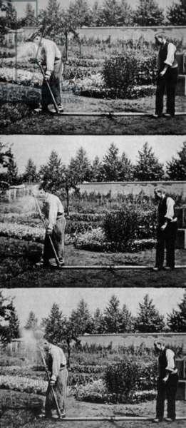 l Arroseur arrose de LouisLumiere 1895