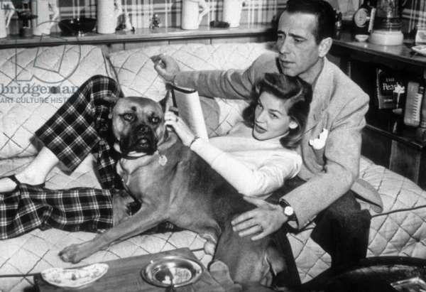 Lauren Bacall et Humphrey Bogart (1899 - 1957), chez eux avec leur chien.