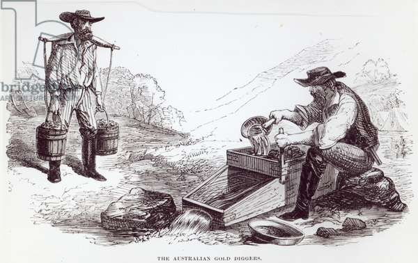 The Australian Gold Diggers (litho)