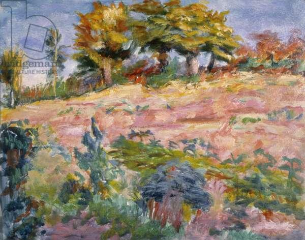 Landscape, c.1910 (oil on board)