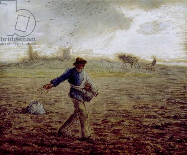 The Sower, c.1865 (pastel & crayon on paper)