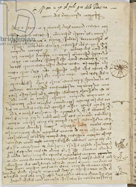 Birds Flight Code, c. 1505-06, paper manuscript, cc. 18, sheet 12 verso