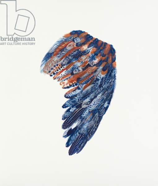 Golden Eagle Wing, Right, 2018 (collaged hand-printed feathers)