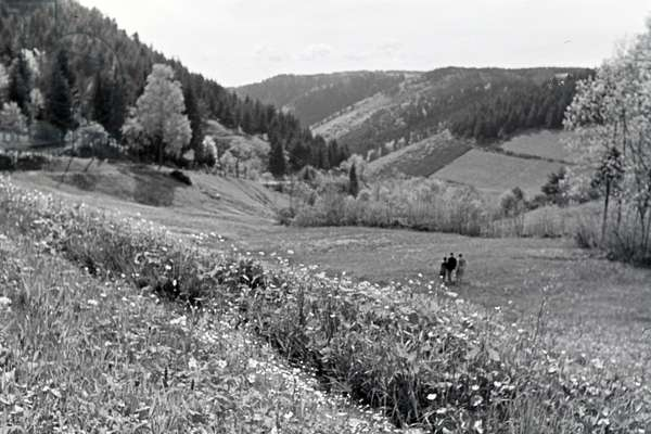 Hikers standing on a field in the Danube Dale, Germany 1930s (b/w photo)