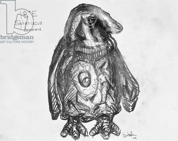 18E African Penguin, 2009, (graphite on paper)