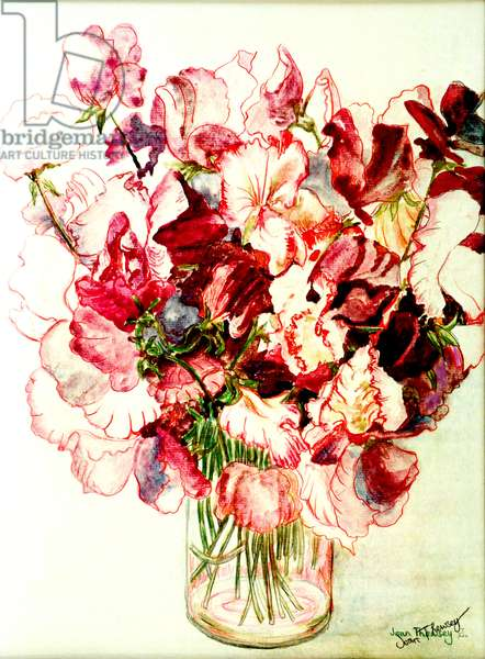 Sweet Peas,2005, (water colour)