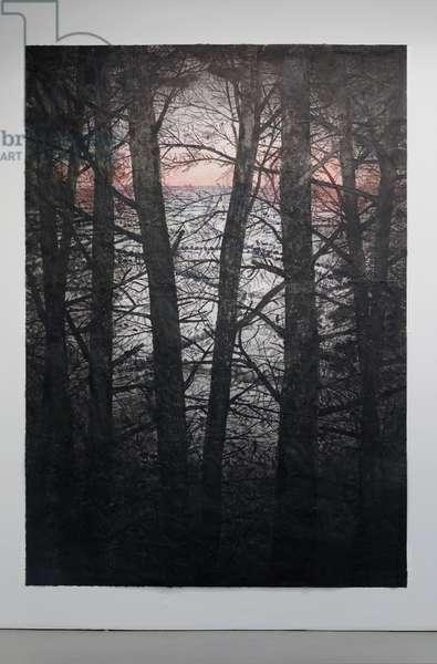 Selva Oscura II, 2014 (acrylic, charcoal, soot, ash, pencil on paper)