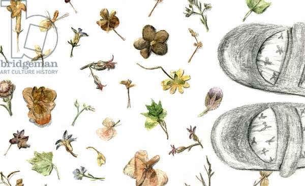 Pressed Flowers, 2020, (watercolour and pencil on paper)