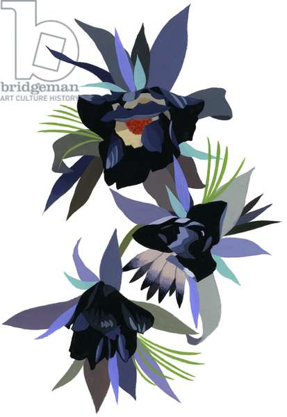 Black imaginary flower