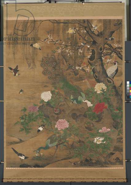 Hanging Scroll, Birds Gather under the Spring Willow, late 1400s-early 1500 (ink & colour on silk)