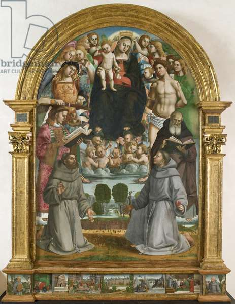 Altarpiece of the Franciscans of Paciano (Table, Tempera painting)