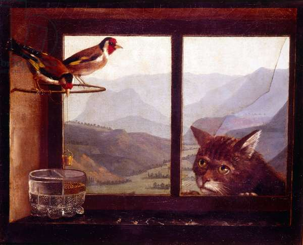 The Cat and the Goldfinches, 19th