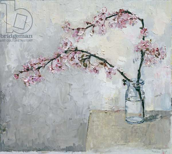 Blossom in glass vase