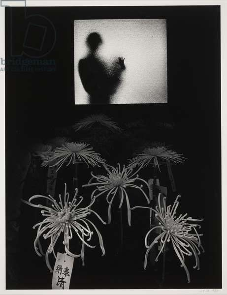 Untitled, 1980 (gelatin silver print with selenium & sepia toners)