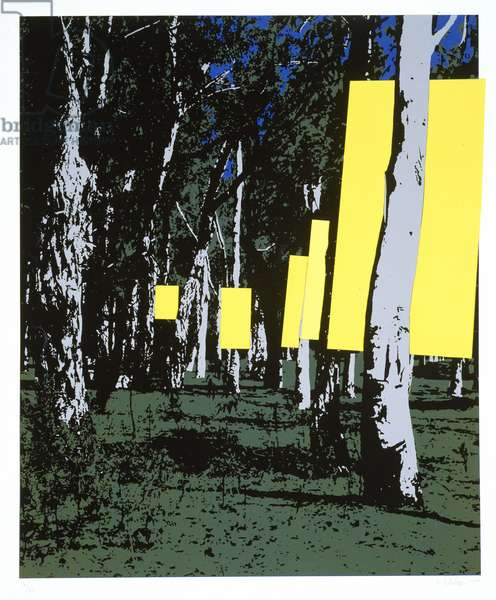 Yellow Forest, 1970 (colour litho)