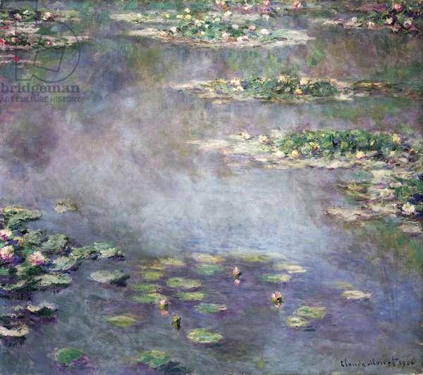 Nymphéas, 1906 (oil on canvas)