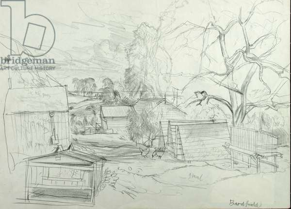Bardfield Allotments (pencil on paper)
