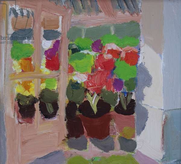 Geraniums in an open doorway